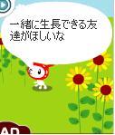 20060310203210.jpg
