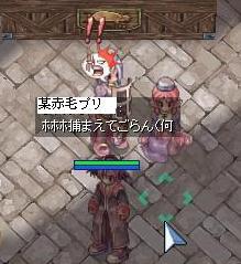 11_23_2.jpg
