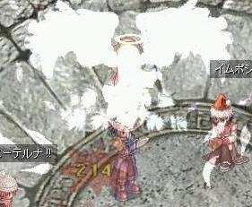 12_16_5_2.jpg