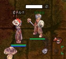 12_25_5.jpg