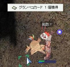 2007_10_8_2.jpg