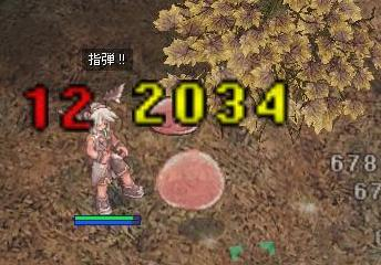 2007_10_8_3.jpg