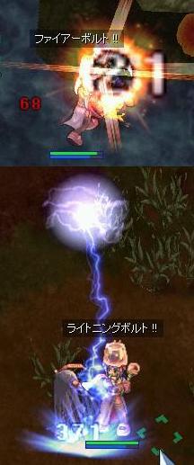 2007_11_10_5.jpg