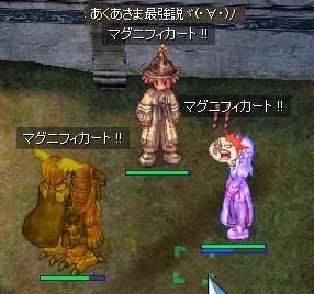 2007_11_15_1.jpg