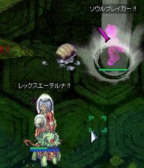 2007_11_25_4.jpg