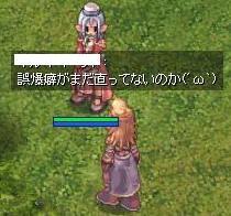 2007_11_4_4.jpg