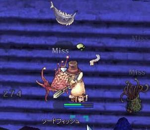 2007_11_8_2.jpg