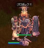 2007_11_8_3.jpg