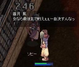 2007_11_9_3.jpg