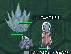 2007_12_19_6.jpg