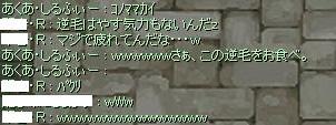 2007_12_31_2.jpg