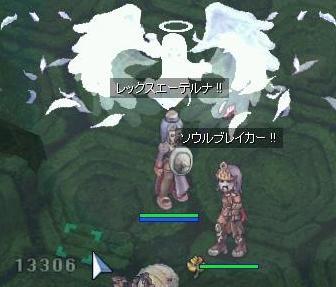 2007_12_31_4.jpg