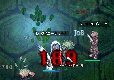 2007_12_5_4.jpg