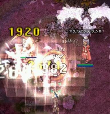 2007_2_23_4.jpg