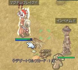 2008_1_4_7.jpg