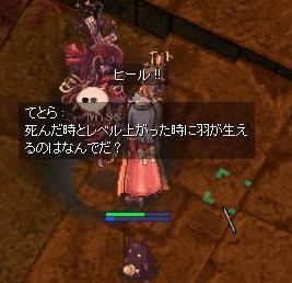 2008_2_16_1.jpg