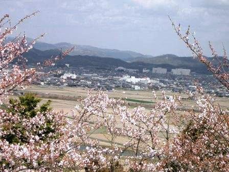 下山田八幡宮から市街地を望む