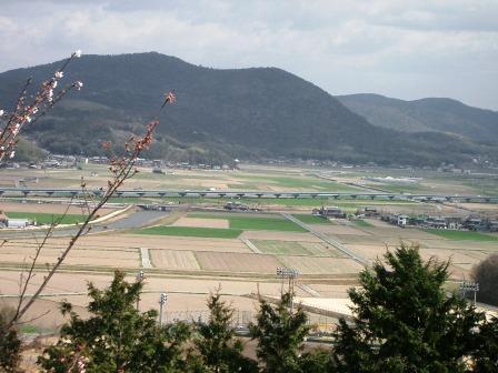 下山田八幡宮から平野を望む