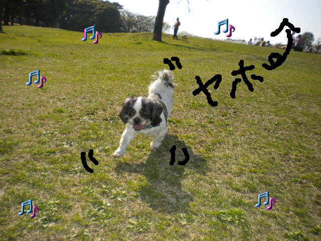 2009-04-08-9.jpg