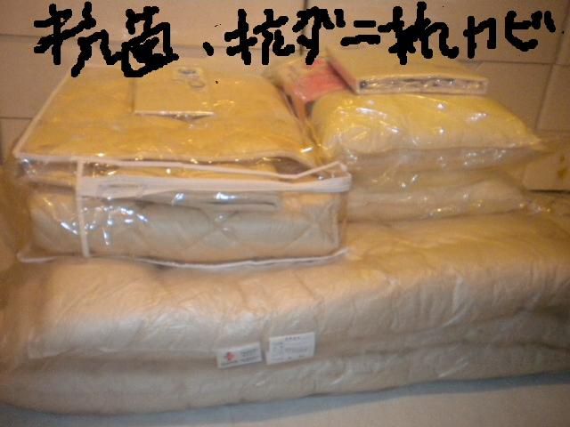2009-04-10-8.jpg