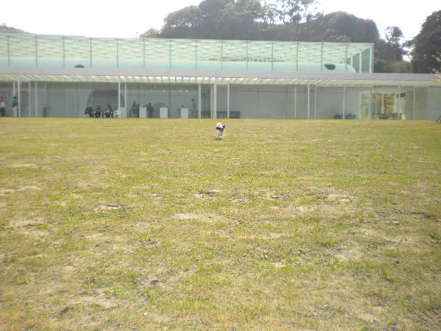 2009-04-12-14.jpg