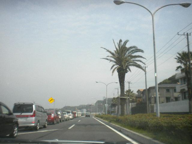 2009-04-12-20.jpg