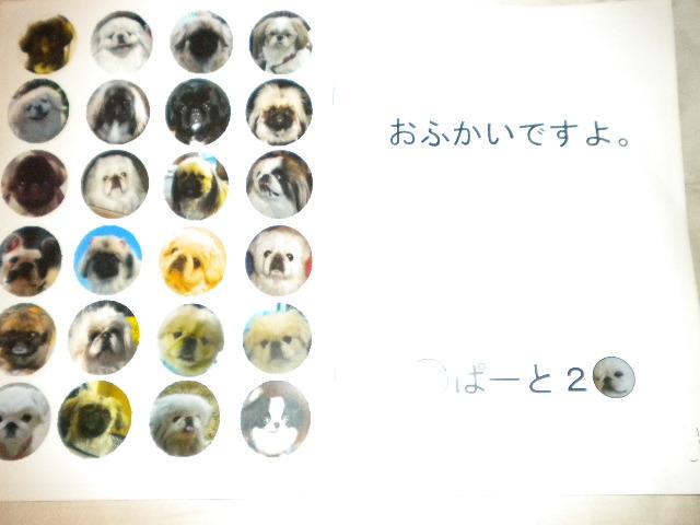 2009-04-21-3.jpg