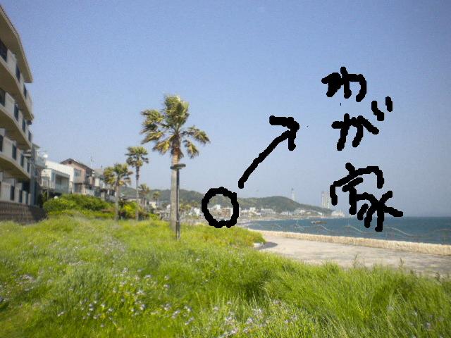 2009-05-02-11.jpg