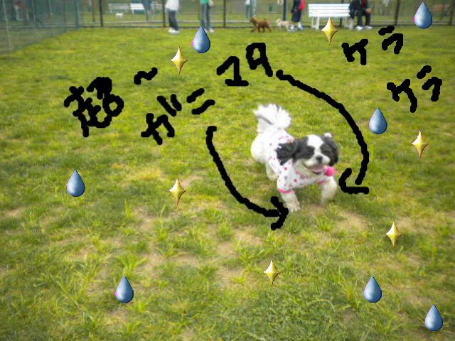 2009-05-07-10.jpg