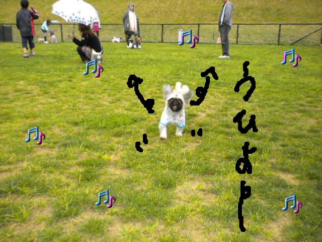 2009-05-07-11.jpg