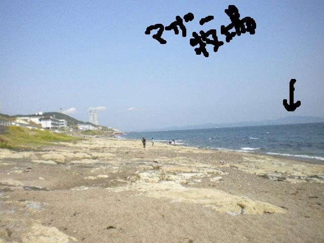 2009-05-09-05.jpg