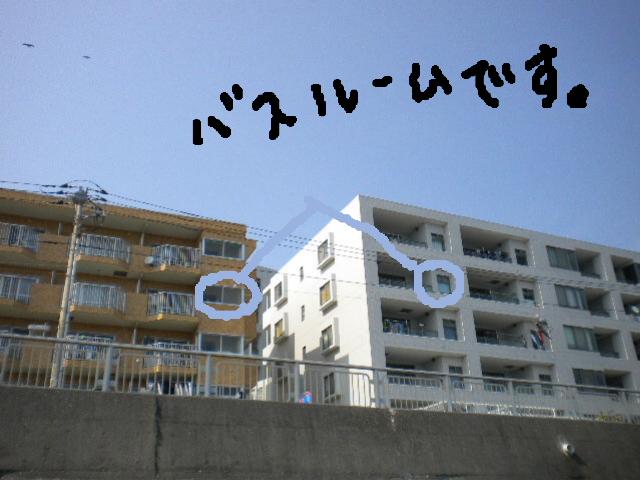 2009-05-09-9.jpg
