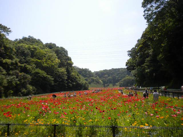 2009-05-10-8.jpg