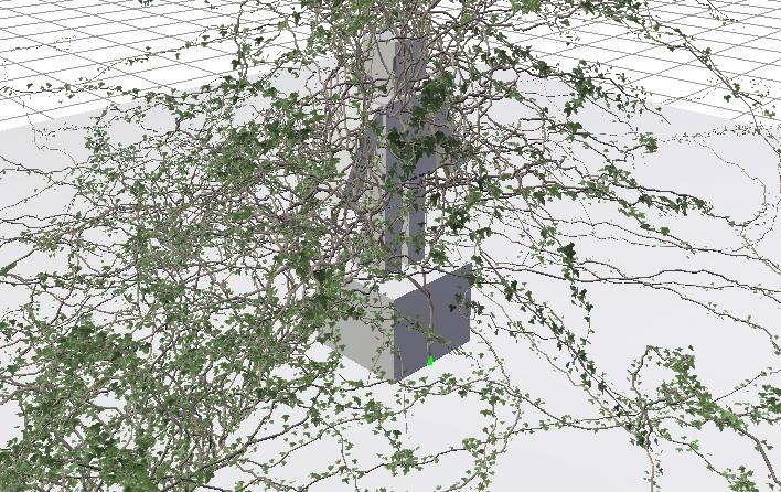 ivy14.jpg