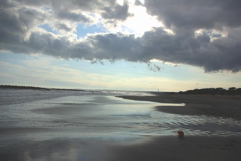陽が歩き回る波うち際