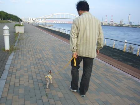 海沿いのシャロンとパパ