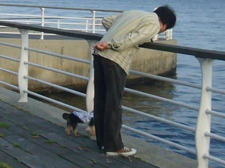 海を見るパパとラピ