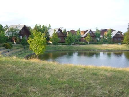池の周りのコテージ