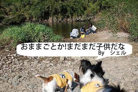DSC_0040_20081107113440.jpg