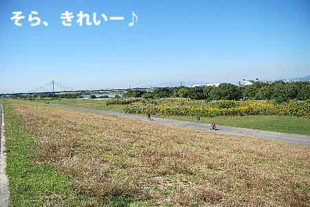 DSC_0095_20081016144202.jpg