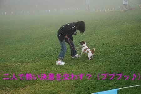 DSC_0100_20080922215543.jpg