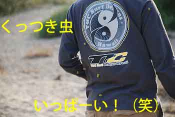 DSC_0183_20081107113729.jpg