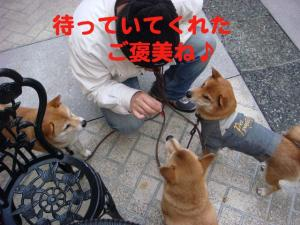 10_20081210193738.jpg