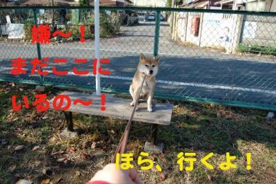 1_20081130000026.jpg