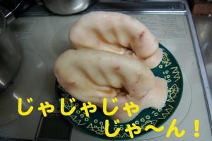 1_20081215021839.jpg