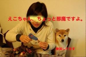 2_20081112014317.jpg