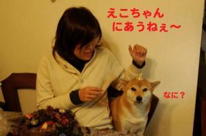 3_20081112014353.jpg