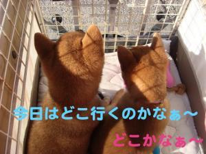 7_20081216193937.jpg