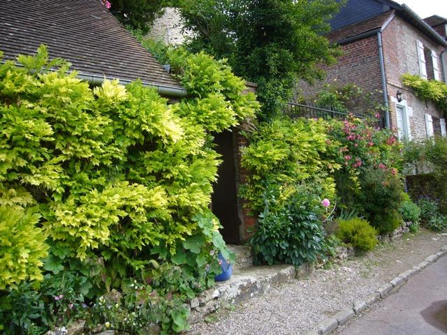 おじさんの庭の入り口