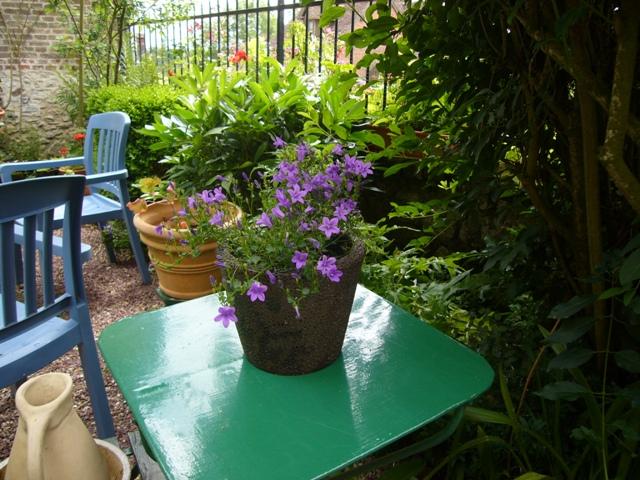 庭に入ったらテーブルが